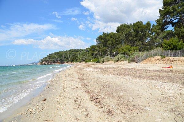 Pellegrin beach of Bormes les Mimosas in France