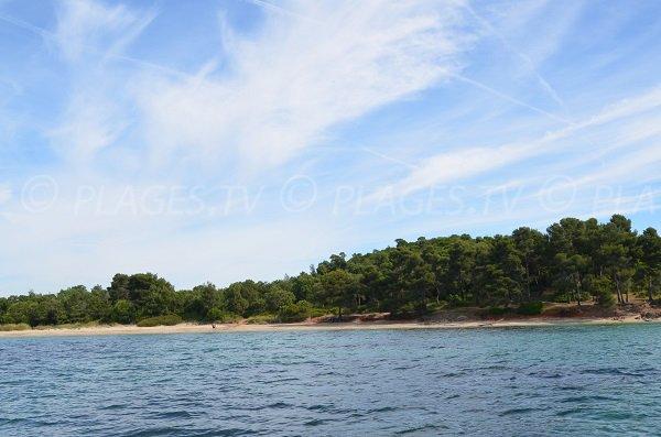 Partie centrale de la plage du Pellegrin à Bormes les Mimosas
