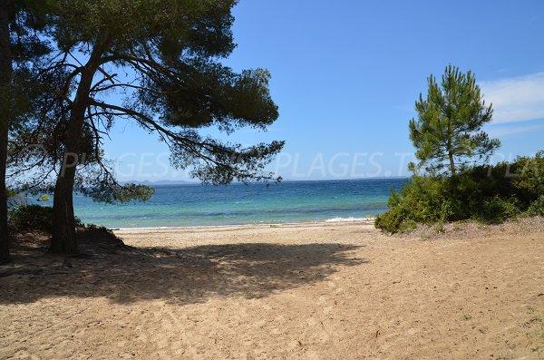 Pellegrin beach in Bormes les Mimosas in France