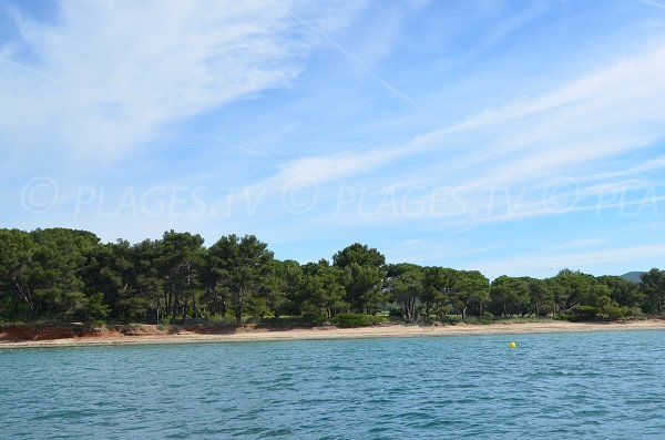 Photo of Pellegrin beach in La Londe les Maures from the sea