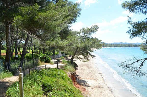 Wild beach in La Londe les Maures in France