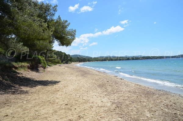 Beach with shade in La Londe les Maures