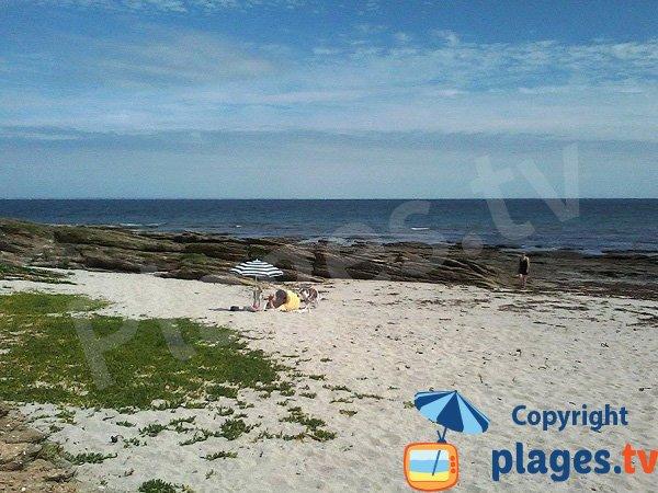 Plage avec des rochers et de la pelouse sur l'ile de Groix - Pen Ganol