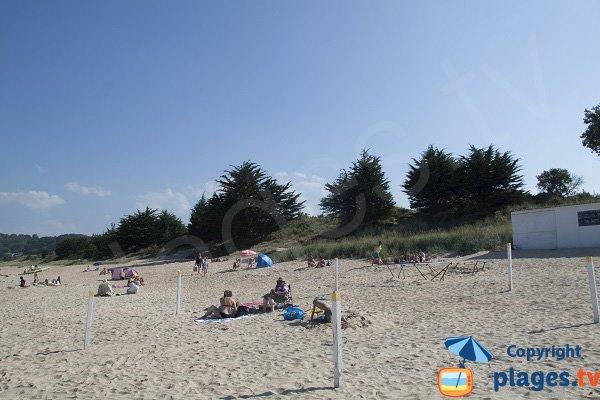 Environment of the beach of Pen Guen