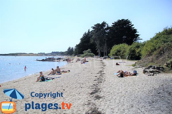 Plage de sable fin sur l'ile d'Arz