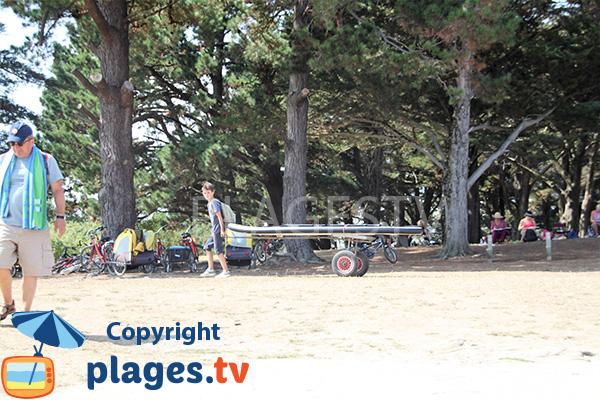 Bosquet autour de la plage de Penara - Ile d'Arz