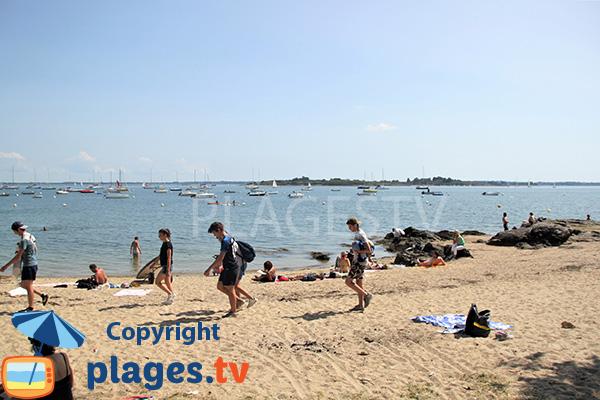 Ile d'Ilur dans le golfe du Morbihan - Ile d'Arz