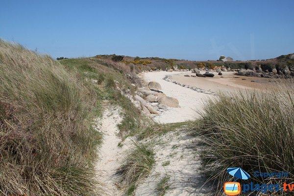 Sentier de la plage de Penn ar Waremm sur l'ile de Callot