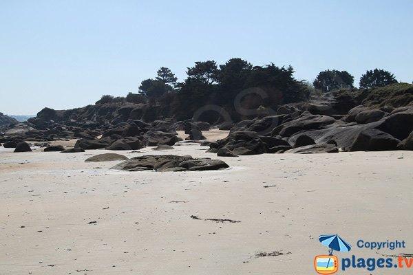 Environnement de la plage nord de l'ile Callot