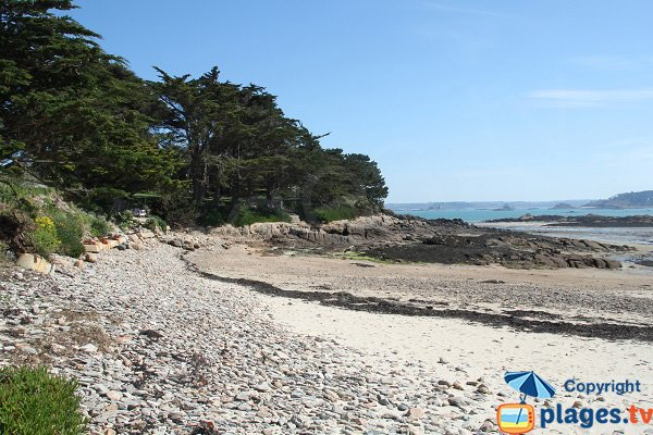 Beach with trees on the island of Callot