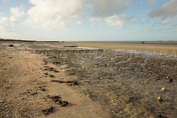 Photo de la plage de Pennedepie en Normandie