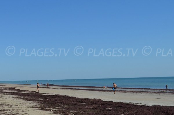 Plage de sable à proximité de Couarde sur l'île de Ré