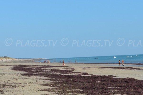 Spiaggia La Pergola a Couarde sur Mer - Ile de Ré
