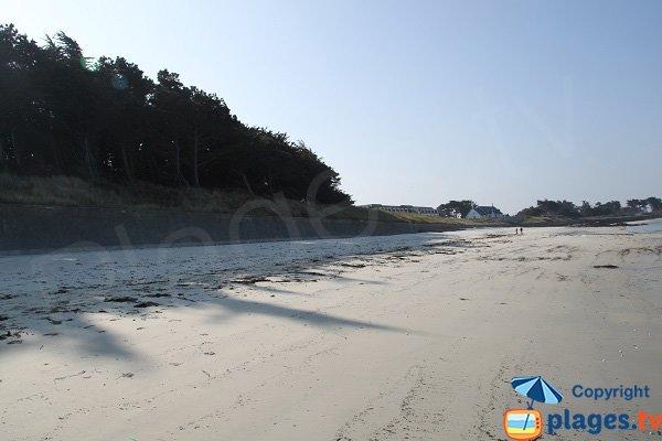 Shade of Perharidi beach