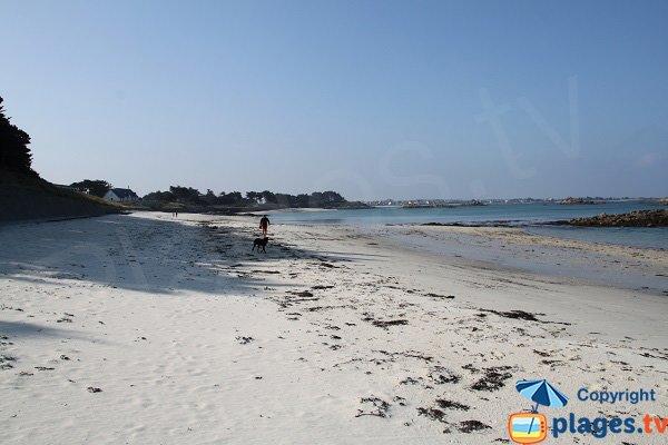 Walks on the Perharidi beach - Roscoff