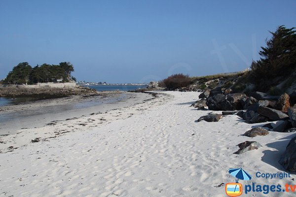 Photo de la plage de Perharidi face à l'ilot des Jacobins - Roscoff