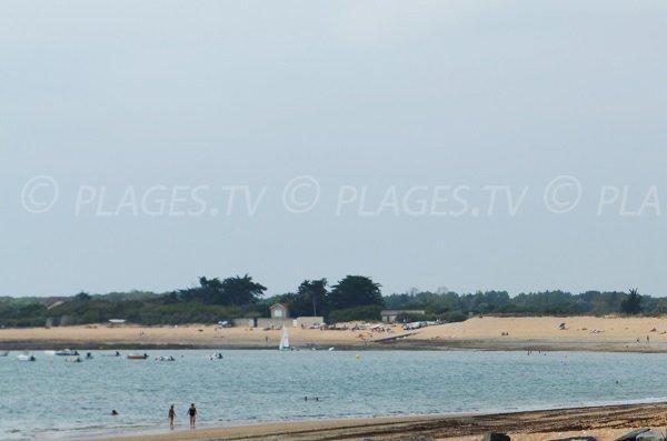 Photo de la plage de Perroche sur l'ile d'Oléron