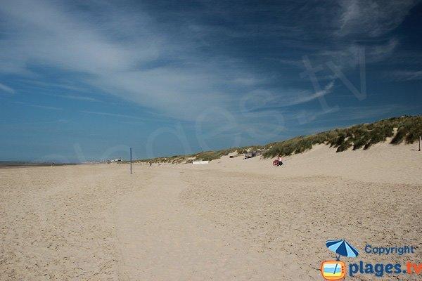 Plage avec des dunes à Bray Dunes