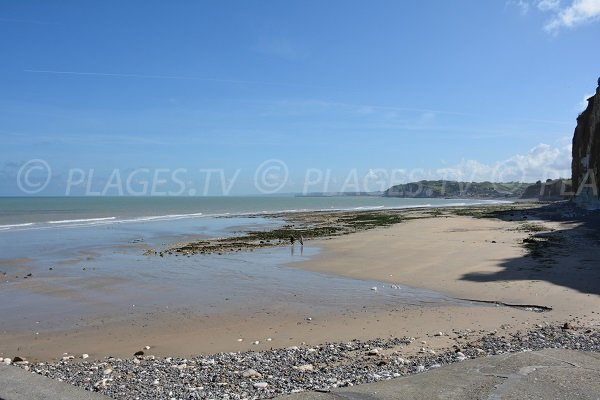 Photo of Petit Ailly beach near Dieppe - France