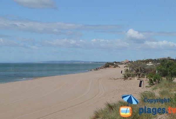 Photo de la plage du Petit Mousse à Vias