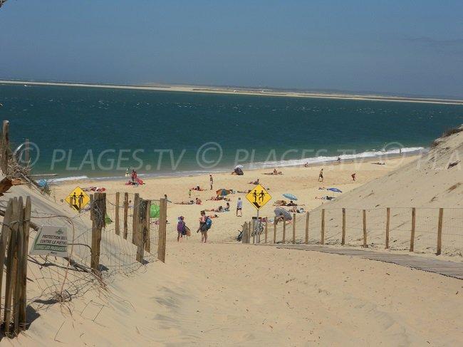 Banco di sabbia d'Arguin et la spiaggia del Petit Nice