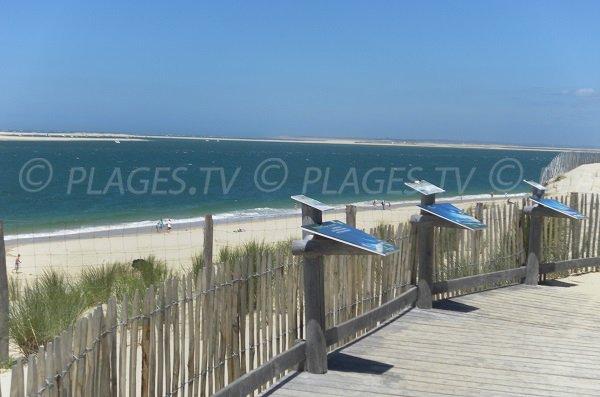 Point de vue sur le banc d'Arguin sur la plage du Petit Nice