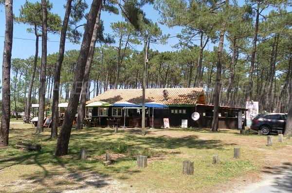 Forêt domaniale de La Teste - plage du Petit Nice