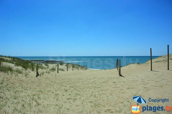 Sentier d'accès à la plage