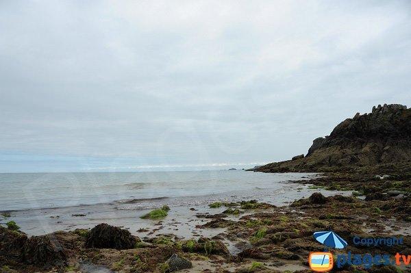 Côte autour de la plage du Petit Port - Cancale