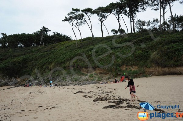 Photo de la plage du Petit Port à Cancale