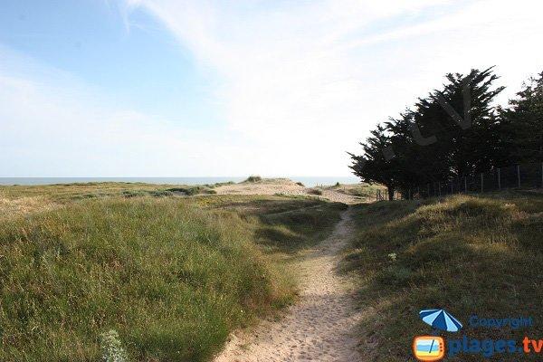 Access to the Sochard beach in Saint Jean de Monts
