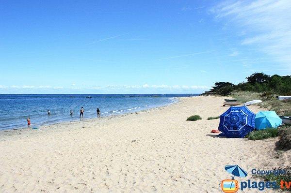 Photo de la plage de la Petite Conche sur l'Ile d'Yeu
