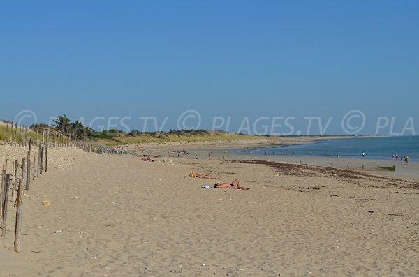 Plage de sable à Couarde sur Mer sur l'île de Ré