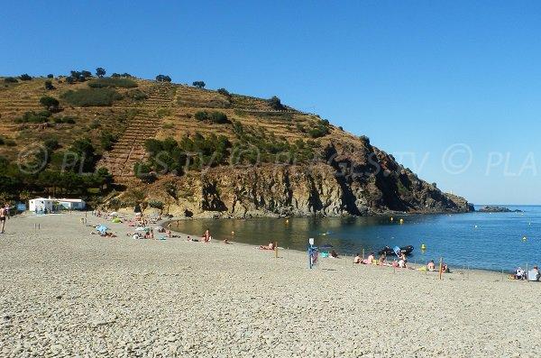 Photo de la plage de Peyrefite de Cerbère avec vue sur la pointe d'En Cames