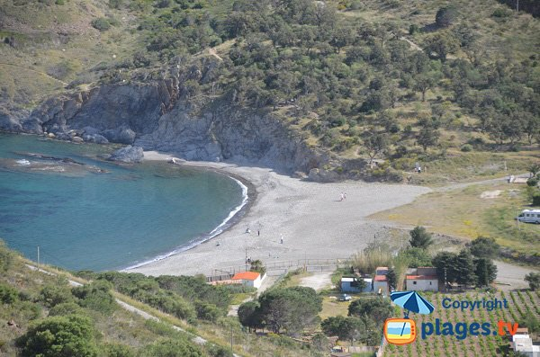 Beautiful beach in Cerbere