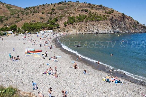 Belle plage à Cerbère - Plage de Peyrefite