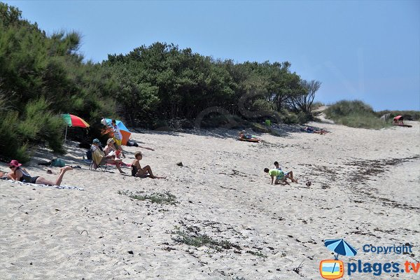 Shade beach in Brignogan - Le Phare