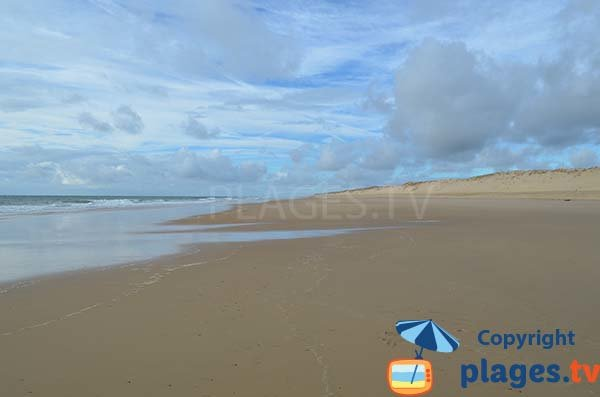 Great beach on the Wild Coast of La Tremblade - Coubre