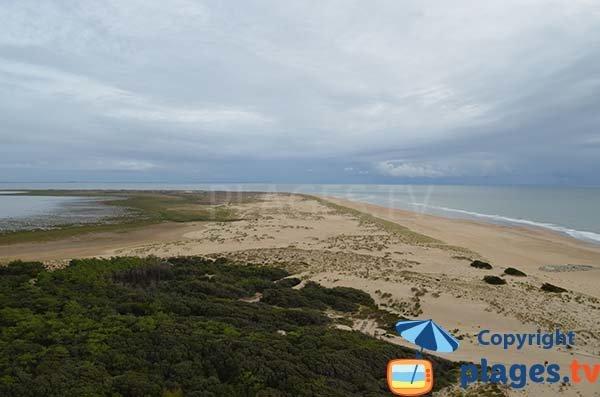Coubre beach at the level of Bonne Anse - La Tremblade