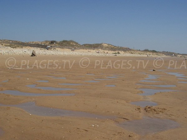 Dunes of Phare beach in La Tranche sur Mer