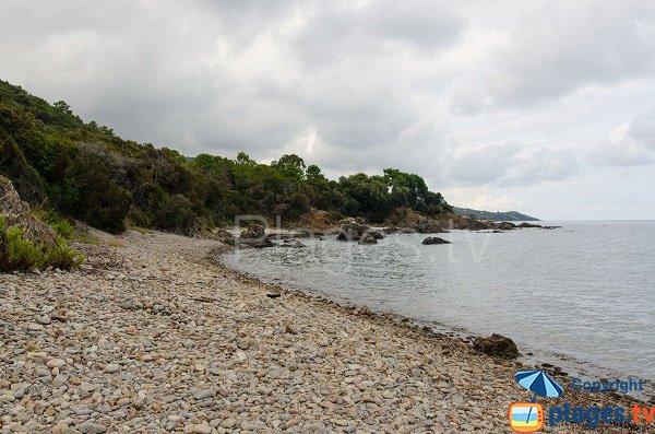 Vue nord de la plage de Pianicci - Sud de Solenzara