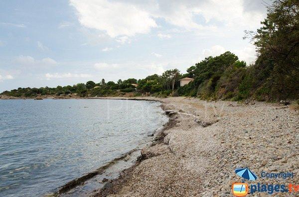 Photo de la plage de Pianicci à Solenzara