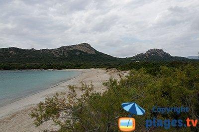 Beach in Pianottoli Caldarello in Corsica