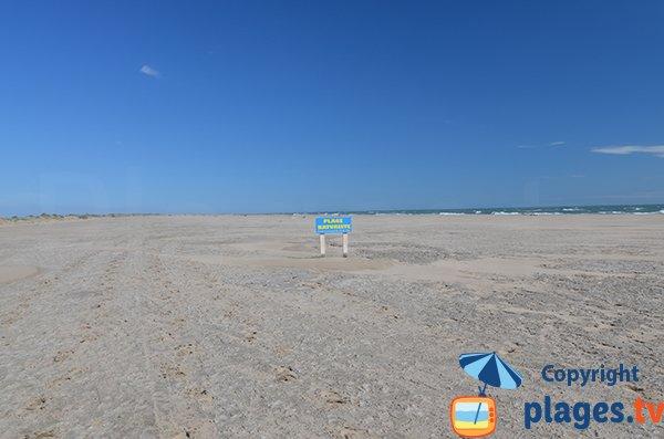Début de la plage naturiste de Piémanson