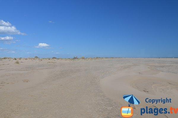 Dunes della spiaggia di Piemanson