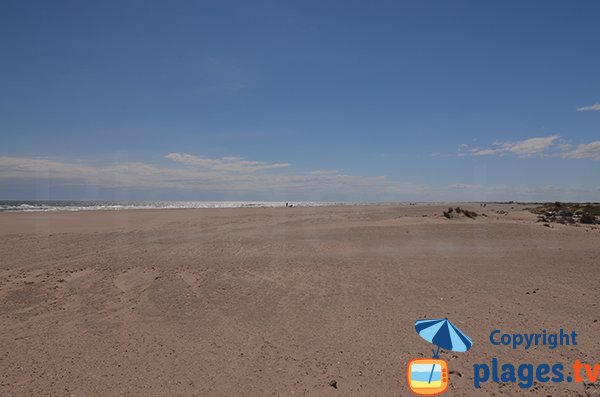 Foto of Piémanson beach in Salin de Giraud - France