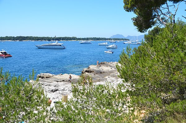 View on St Honorat island from Sainte Marguerite - lerins island