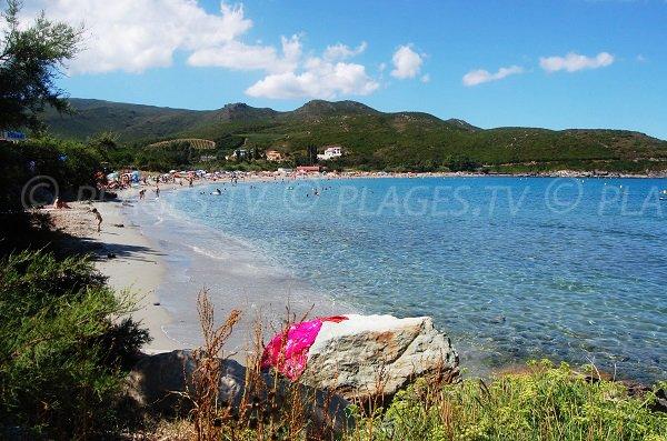 Plage de sable dans le Cap Corse - Marine de Pietracorbara