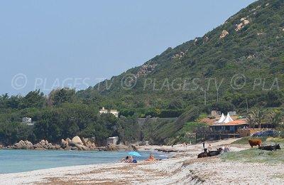 Pietrosella beach in Corsica