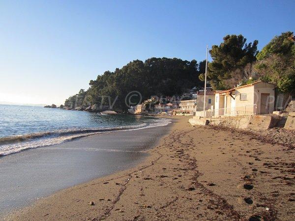Pin de Galle beach in Le Pradet in France
